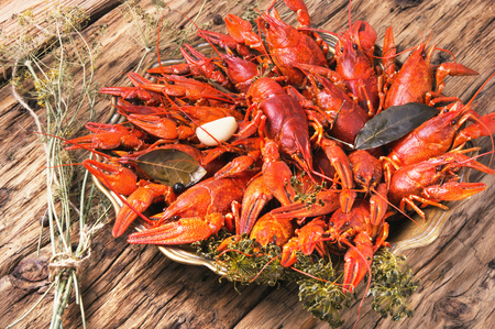 Cooked crayfish with spices on a stylish tray Stock Photo