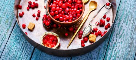 Harvest fresh red berries cranberries in bowl.Cowberry concept Stock Photo