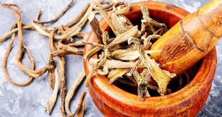 Medicinal raw materials from roots and rhizomes inula.Root elecampane