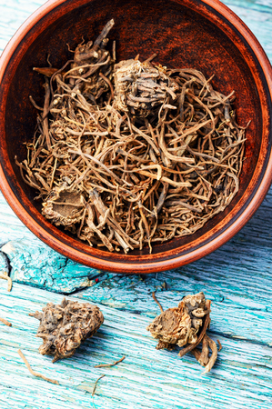 Traditional remedy from valerian roots in a mortar.Herbal medicine Stock Photo