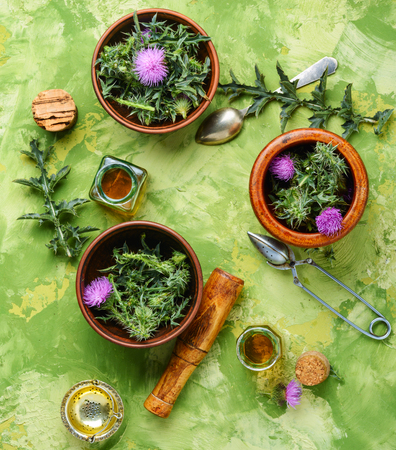 Healing plant of thistle and medical bottles with extract.Herbalism