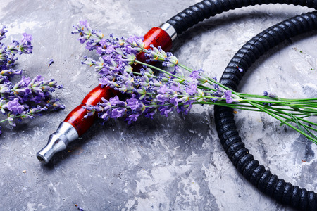 Smoke hookah with lavender floral .Shisha concept.Hookah concept