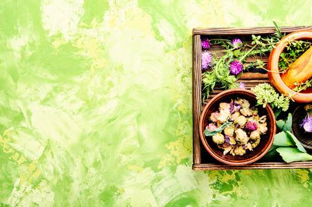 Various raw medical herbs and flowers.Alternative medicine concept.Herbal medicine