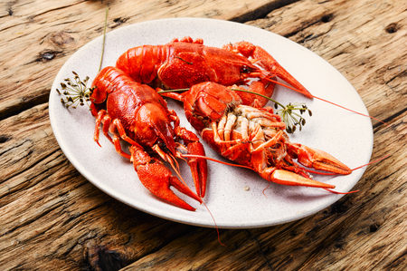 Boiled crayfish on the table.Crawfish on wooden surface