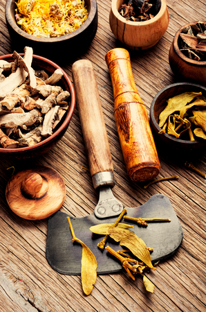 Healing herbs in wooden bowl, dried plants and root, herbal medicine. Stock Photo