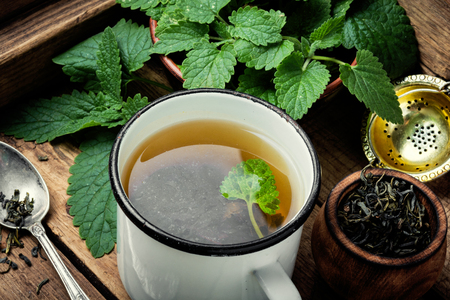 Fresh natural green melissa herbal tea in cup.eHealthy herbal tea Фото со стока