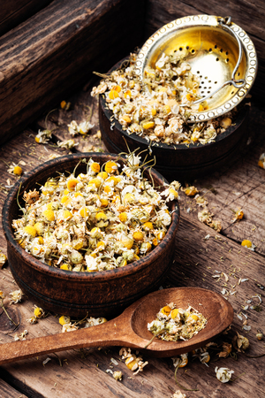 Dried chamomile flowers on wooden table.Alternative medicine Stok Fotoğraf