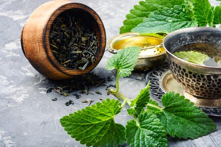 Fresh natural green melissa herbal tea in cup.Healthy beverage