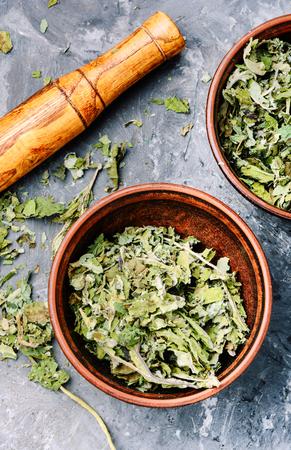 Dry leaves of coltsfoot. Herbal alternative medicine.