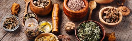 Big set of healing herbs, plants and medicinal roots.Long banner 免版税图像