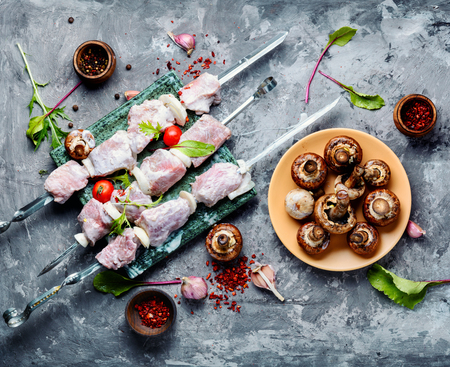 Marinated raw kebabs for summer barbecue party