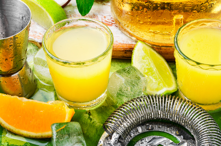 Alcoholic summer citrus cocktail with orange.Ingredients for making alcoholic summer cocktail Фото со стока