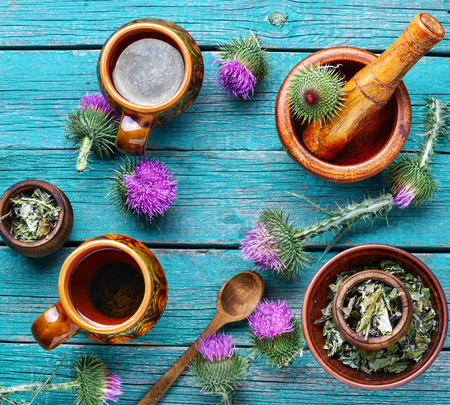 Herbal tea.Medical plants flowers.Milk thistle or Silybum marianum Stock Photo
