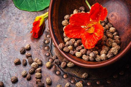 Seeds, leaves and flowers of nasturtium.Spice.Herbal medicine