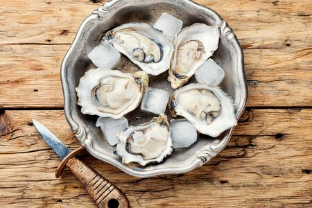 Fresh oysters in plate of ice.Seafood on dark wooden background Stock Photo