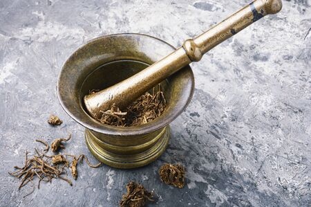 Dried Valerian roots in old bronze mortar.Medicinal herb Stock Photo