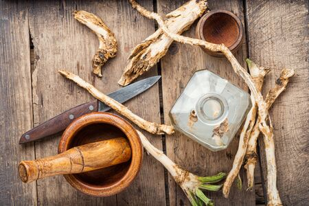 Preparation of alcohol tincture from fresh horseradish root