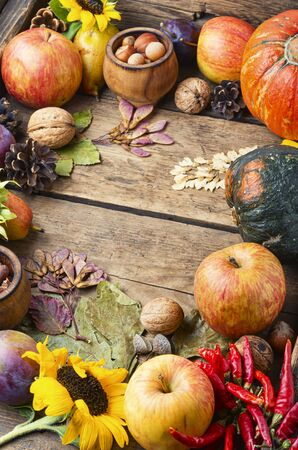 Autumn composing with pumpkin, fruit and fall leaves.Autumn background