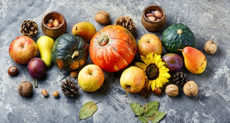 Autumn composing with pumpkin, fruit and fall leaves