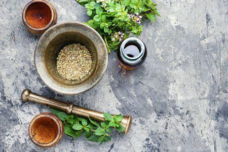 Oregano or marjoram leaves in herbal medicine Stockfoto