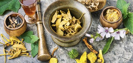 Mortar and bowl of raw and dried healing herbs.Alternative or herbal medicine 写真素材