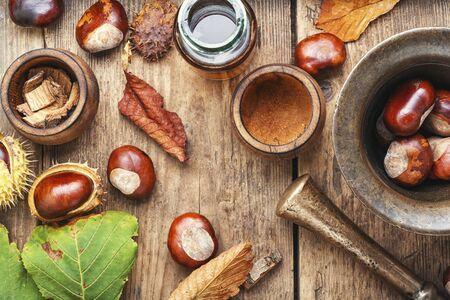 Chestnut and ingredients in homeopathy medicine.Medicine herbal 写真素材