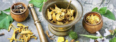 Mortar of raw and dried healing herbs.Alternative or herbal medicine.Long banner Reklamní fotografie