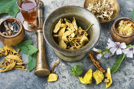 Healing herbs with mortar and bottle of elixir.Alternative or herbal medicine Reklamní fotografie