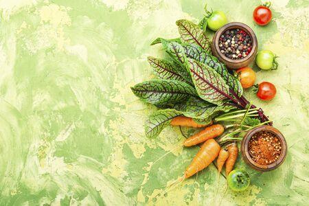 Set of fresh raw vegetables for diet salad.Salad ingredients. Stock Photo