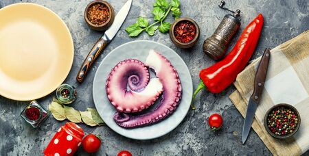 Fresh raw octopus and spice on plate.Uncooked octopus tentacles, seafood. Stock fotó