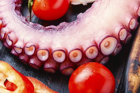 Tentacles of raw octopus.Mediterranean seafood.Raw octopus ready for cooking