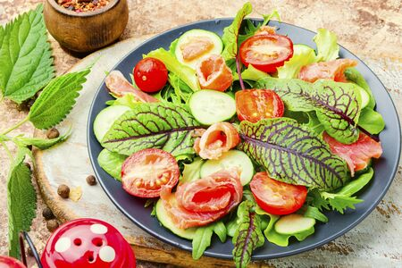 Tasty salad with salmon,cherry tomato,cucumber and herbs Stock Photo