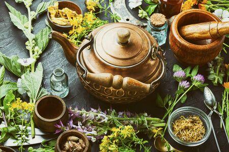 Fresh medicinal,healing herbs.Alternative medicine herbal.Natural herbal medicine
