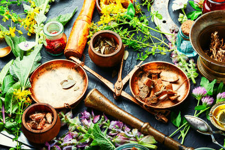 Fresh medicinal,healing herbs.Alternative medicine herbal.Natural herbal medicine