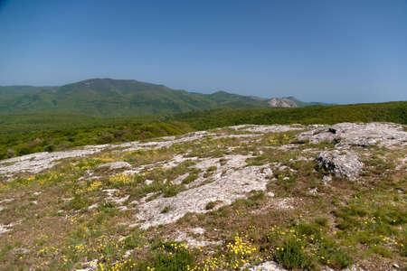 Lifeless stone field in the mountains Stock Photo