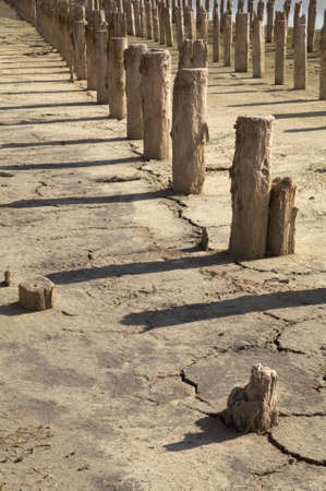 The old wooden destroyed columns on the dried up earth Stock Photo