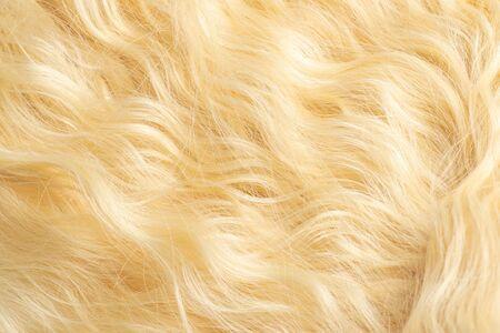 Blond beau motif de cheveux ondulés. Vue de dessus.