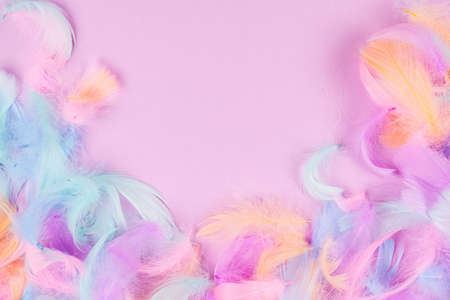 Colorful feather background, top view. Stock Photo