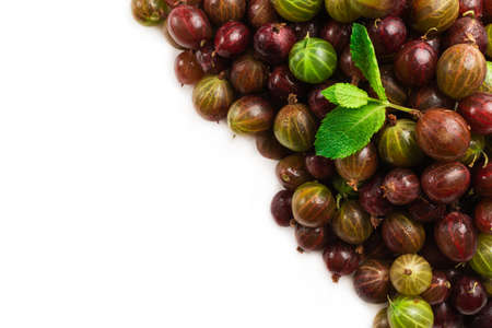 Gooseberry and mint isolated on white background. Top view.
