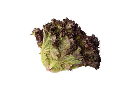 Fresh purple salad isolated on a white background. Top view. Standard-Bild