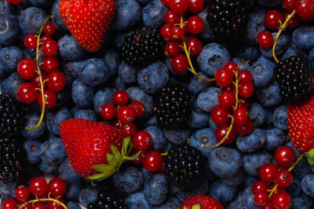 Blackberry, raspberry, blueberry, red currant as a background. Top view.