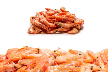Shrimps isolated on a white background.