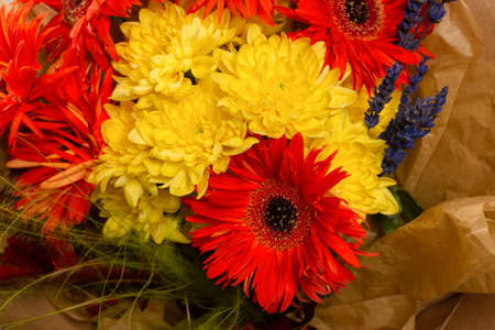 Autumn bouquet with orange and yallow flowers. Gerbera.