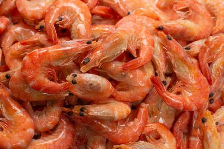 Shrimps background texture. A lot of shrimps. Cooked shrimps.