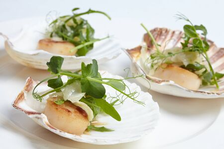 scallops: appetizerclose-up: scallops, onion fennel, herbs Stock Photo