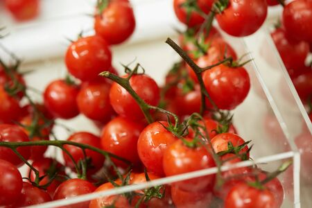twigs: cherry tomatoes on twigs Stock Photo
