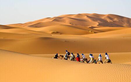 Camel caravan going through the sand dunes in the Sahara Desert, Morocco. photo