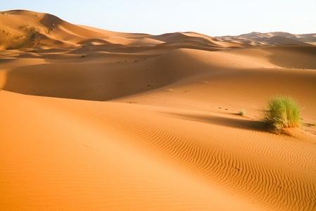 Moroccan desert dune background Stock Photo