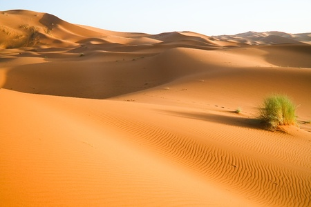 Moroccan desert dune background Stock Photo
