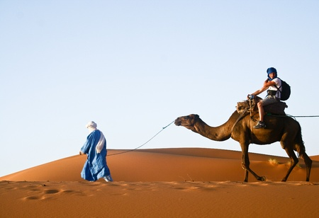 Camel caravan passant par les dunes de sable dans le désert du Sahara, le Maroc.